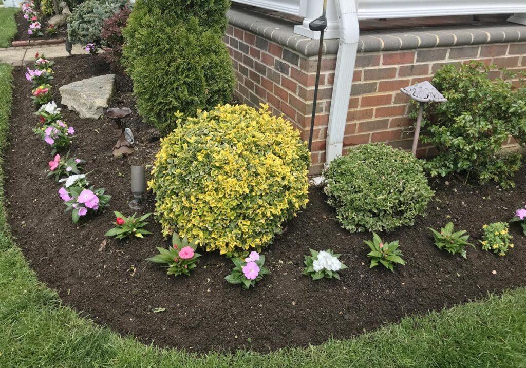 flower-garden-in-front-of-house